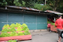 Lemons in Sri Lanka